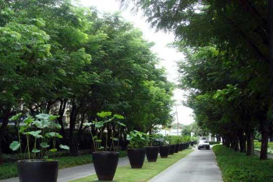Sukhothai Hotel & Residence
