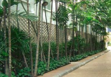 Pacific Star International Sathorn Garden Renovation