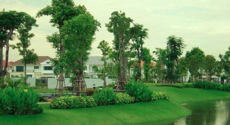 Narai Parkland Project